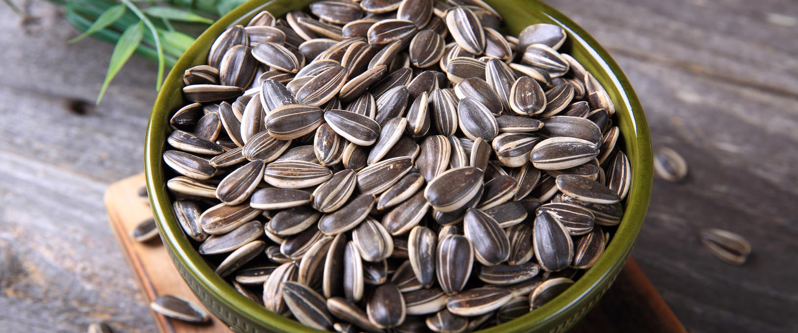 All You Need to Know About Sunflower Seeds   J.C.'s ...