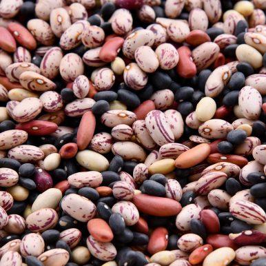 Legumes_Bulk